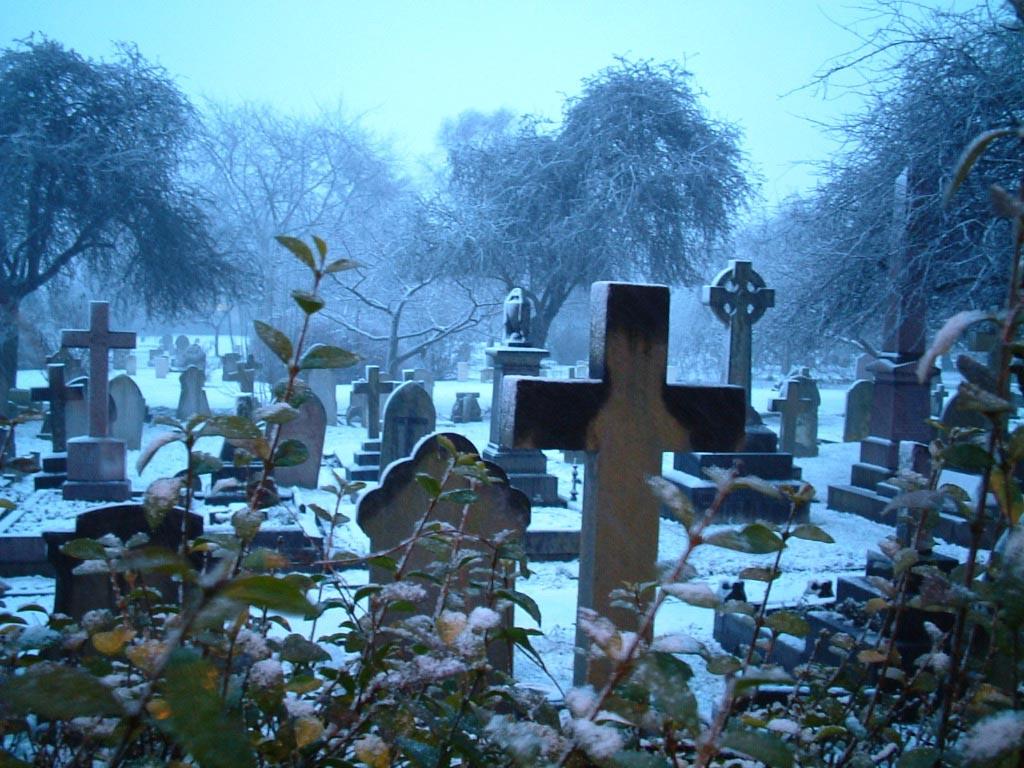 Cementerio Cementerio_nevado